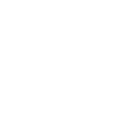 Sterling coin